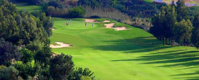 golf3_copy