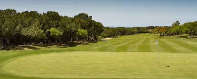 wes4297go-195597-Golf course a 8 hole 2-Med_copy